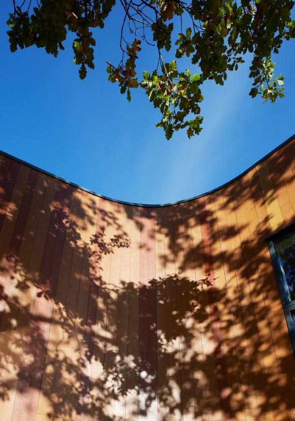 Уникальный L-образный дом фото 4